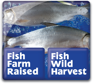 Fish Farm Raised & Fish Wild Harvest