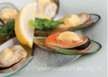 NZ Greenshell™ Mussels with garlic butter (Serves 2)